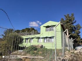 בית בצבע ירוק