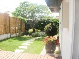 מראה הגינה