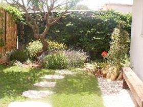 מבט לגינה