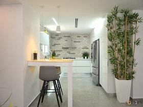 דירה עם צמח גדול