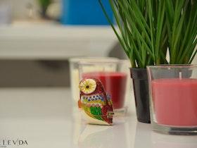 3 נרות צבעוניות עם צמח פלסטיק