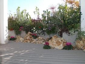 גינת גג סלעים