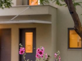 צילום של צמחייה ממול לבית