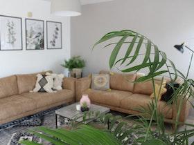 2 ספות בסלון עם שולחן וצמחים