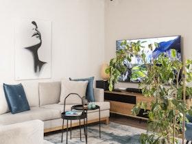 צילום סלון עם טלויזיה תלויה ושטיח