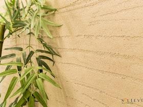 צמח מטפס על קיר