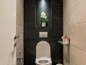 שירותים שחור חום